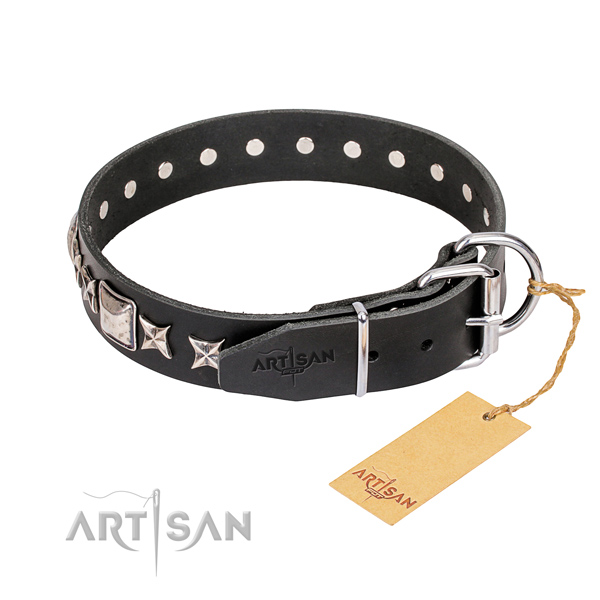 Stylish walking leather collar with adornments for your canine