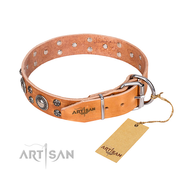 Daily walking full grain natural leather collar with embellishments for your four-legged friend