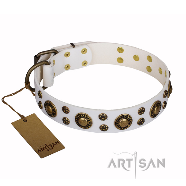 Everyday walking natural genuine leather collar with embellishments for your four-legged friend