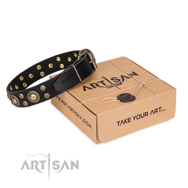 Trendy natural genuine leather dog collar for walking in style