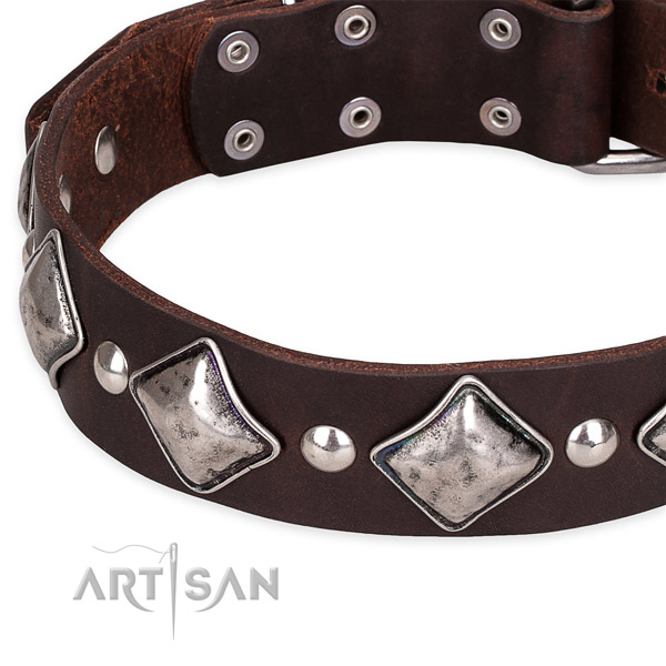 Snugly fitted leather dog collar with resistant to tear and wear chrome plated buckle