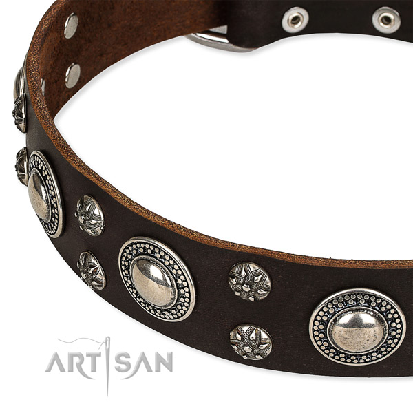 Easy to adjust leather dog collar with resistant chrome plated buckle and D-ring