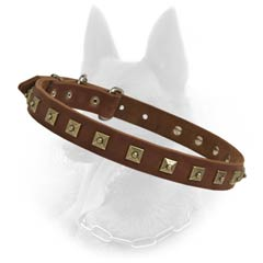 Cool Fitting Malinois Dog Leather Collar