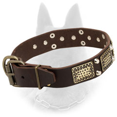 Handcrafted Belgian Malinois Collar of Leather with Brass Fitting