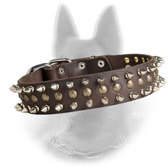 Classy Belgian Malinois Collar with Rustproof Decoration
