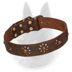 Leather Belgian Malinois Collar with Brass Fitting