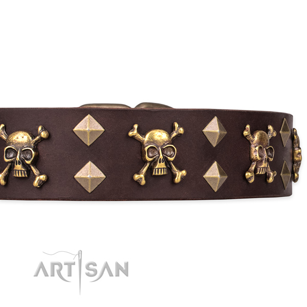 Full grain leather dog collar for easy walking