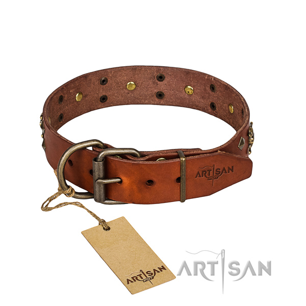 Hardwearing leather dog collar with non-rusting details