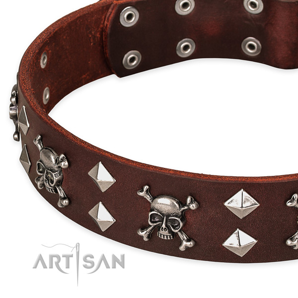 NaturalAwesome leather dog collar for walking