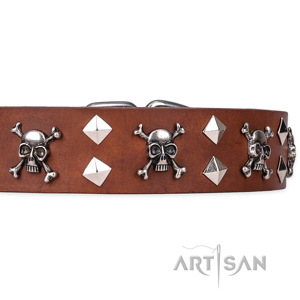 Casual leather dog collar with cute embellishments