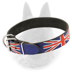 Nickeled Belgian Malinois Collar of Leather with Reliable Fitting
