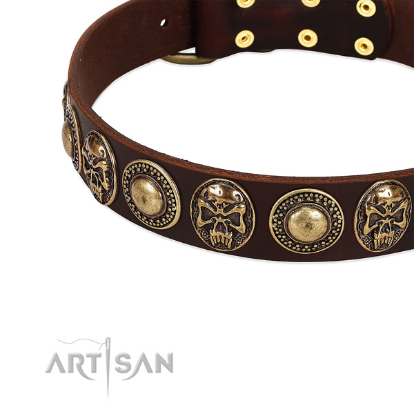 Full grain leather dog collar with studs for stylish walking