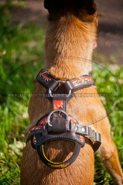 Flames Painted Back Plate of Leather Dog Harness with Reliable Handle and D-Ring
