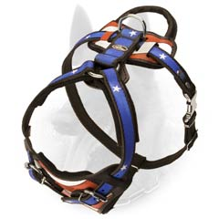 Belgian Malinois Dog Harness With American Pride Image  Painting