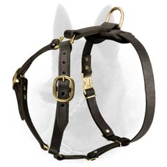 Walking Dog Equipment: Adjustable Leather Belgian Malinois Harness