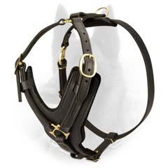 Easy Adjustable Leather Belgian Malinois Harness for Everyday Use