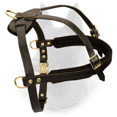 Adjustable Leather Dog Harness for Belgian Malinois Training and Pulling