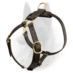 Training Dog Equipment: Leather Belgian Malinois Harness with Brass Plated Hardware
