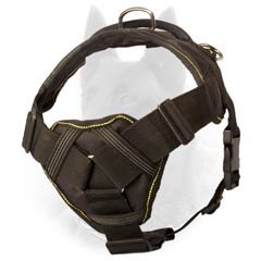 Weather Proof Nylon Belgian Malinois Harness for Everyday Walking and Training