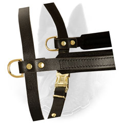 Reliable Side Brass D-Rings of Padded Leather Dog Harness for Weight Attachment