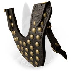 Y-Shaped Studded Chest Plate of Fashionable Leather Dog Harness