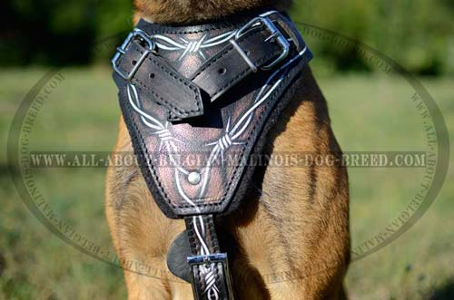 Barbed Wire Painted Chest Plate of Leather Dog Harness for Training