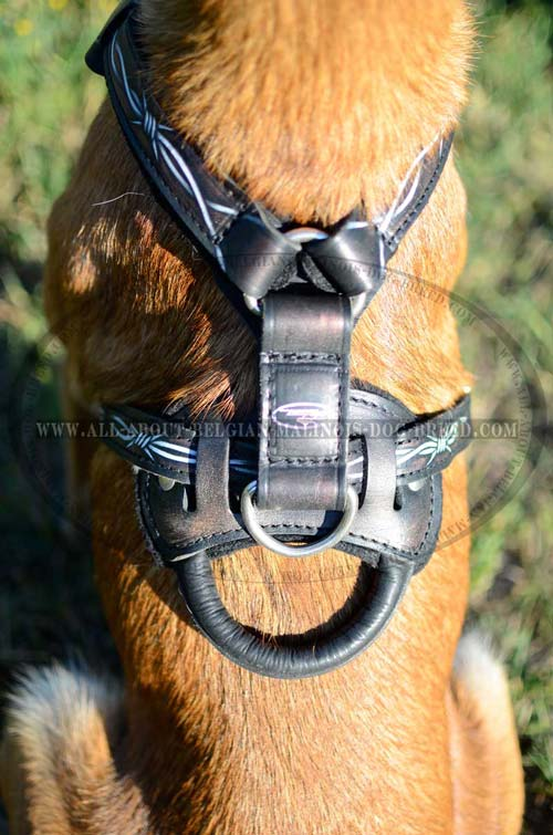 Belgian Malinois Dog Harness For High Activities With Painting And Handle