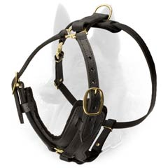 Training Leather Malinois Harness Fitted with Lasting Brass Hardware