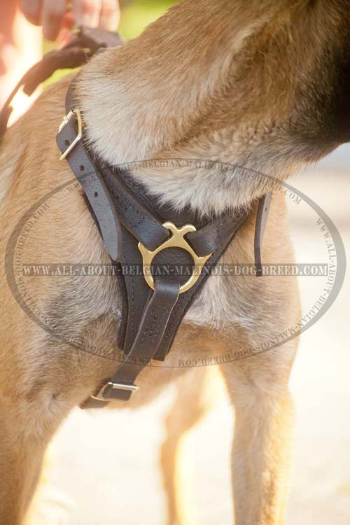 Padded Chest Plate of Leather Dog Harness for Comfy Walking