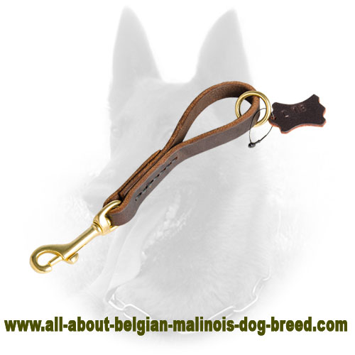 Grab your Belgian Malinois Fast with Short Leather Leash