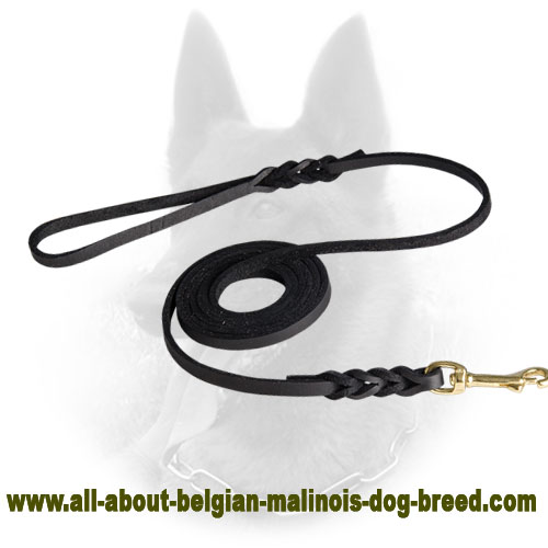 Great Belgian Malinois Leather Leash for Walking in Style