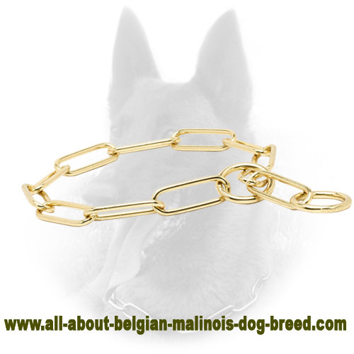 """Chain Trainer"" Fur Saver Belgian Malinois Collar of Brass - 1/6 inch (4 mm)"