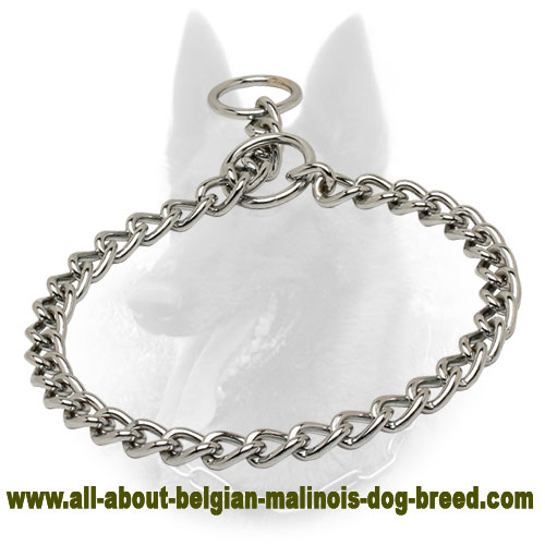 Chrome Plated Choke Belgian Malinois Collar for Training - 1/8 inch (3.5 mm)