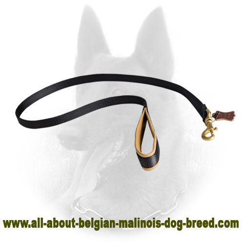 Nylon Belgian Malinois Leash with Nappa Leather Padding