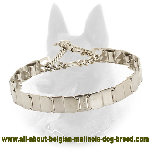 Innovative Neck Tech Belgian Malinois Pinch Collar of Stainless Steel - 1 1/4 inch (3 cm)