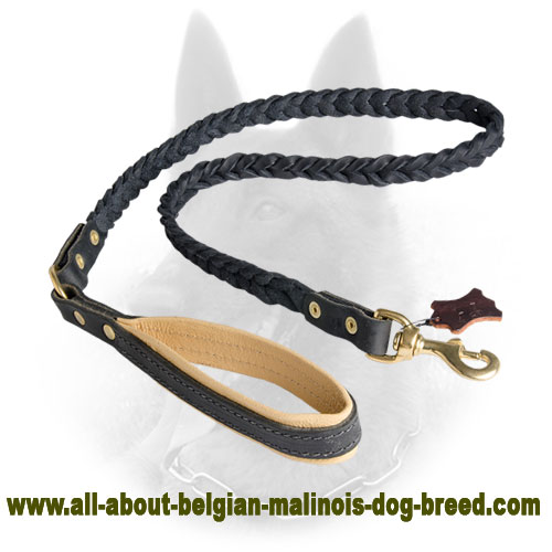 New Braided Belgian Malinois Leather Leash