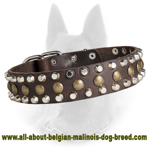 Unique Belgian Malinois Leather Collar with 3 Rows of Pyramid and Stud Decoration