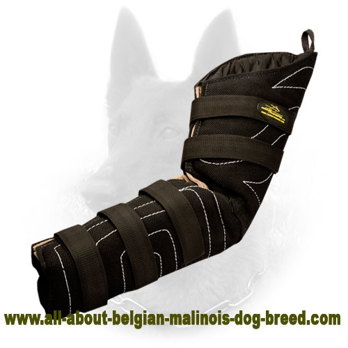 French Linen Belgian Malinois Hidden Bite Sleeve