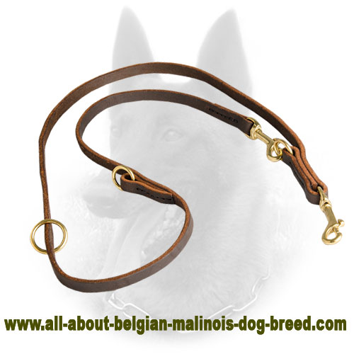 Polyfunctional Leather Belgian Malinois Lead - Walk and Train with Pleasure