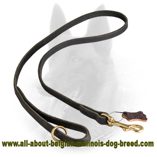 Handcrafted Belgian Malinois Leather Leash for Tracking