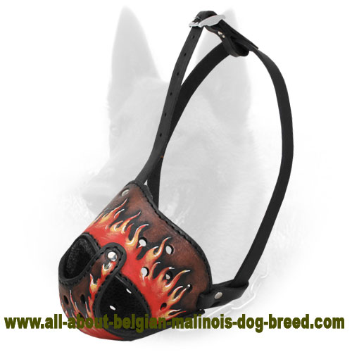 Fabulous New Design Leather Belgian Malinois Muzzle