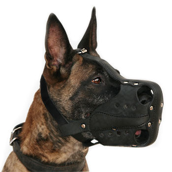 Leather Agitation/Police Dog Muzzle for Malinois or Shepherd M56