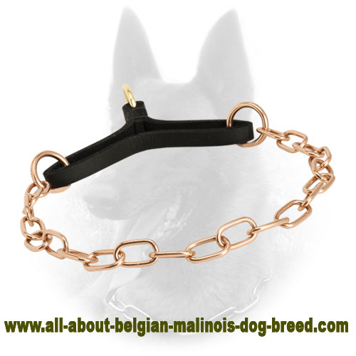 """Perfect to Control"" Curogan Martingale Belgian Malinois Collar - 1/9 inch (3 mm)"