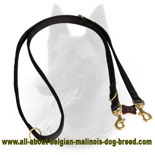 Any Weather Belgian Malinois Nylon Leash