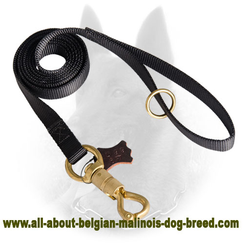 Nylon Belgian Malinois Leash for Police Work