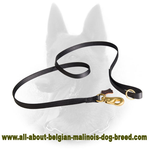 Extra Durable Belgian Malinois Nylon Leash for Tracking