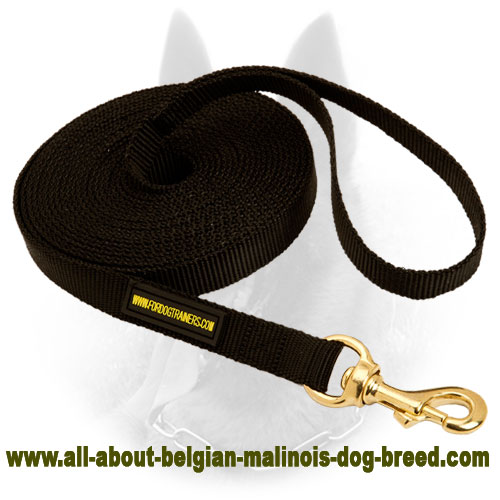 Tracking Belgian Malinois Nylon Leash for Any Weather