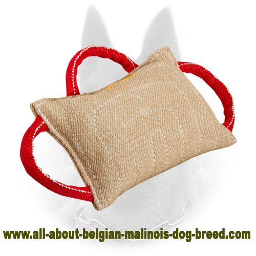 Jute Belgian Malinois Bite Pillow