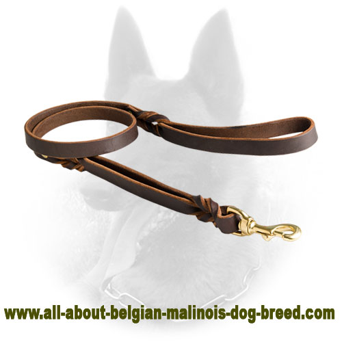 Leather Belgian Malinois Leash with Double Handle