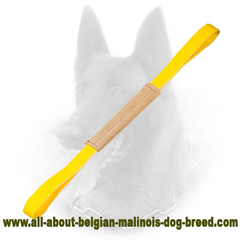 Super Soft Belgian Malinois Bite Tug for Puppies